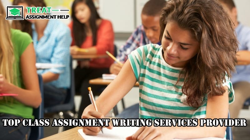 Assignment Help Services Provider
